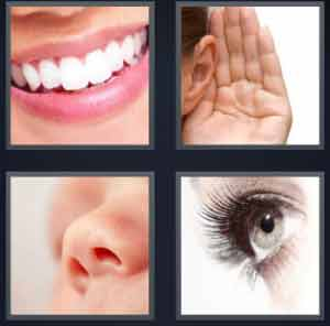 4-pics-1-word-mouth-ear-nose-eye-300x296