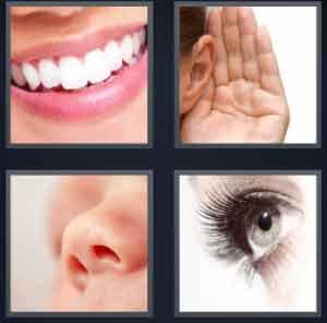 4-pics-1-word-mouth-ear-nose-eye-300x296