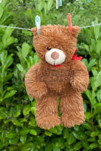 37363823-toy-brown-teddy-bear-hanging-on-the-clothes-line-after-a-bath