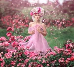 Pink-Rain