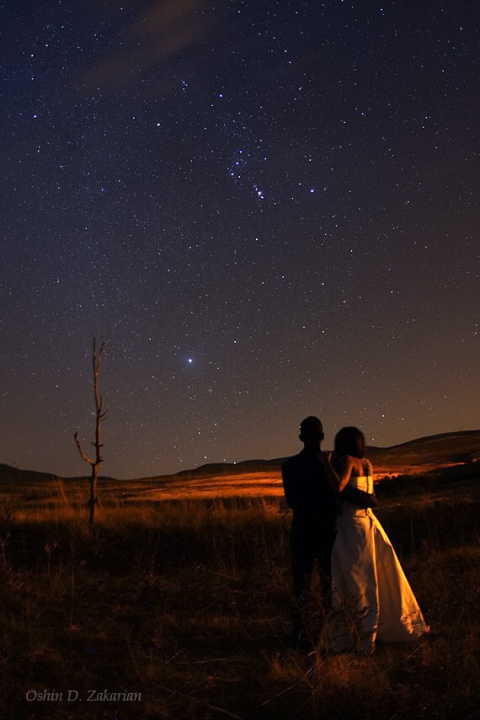 4396134-couple-looking-at-sky-night